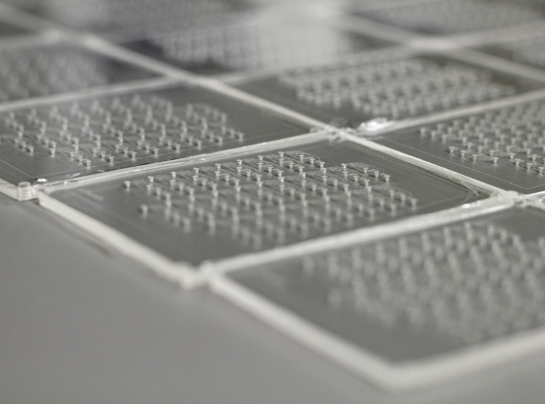 organs-on-a-chip and drug discovery