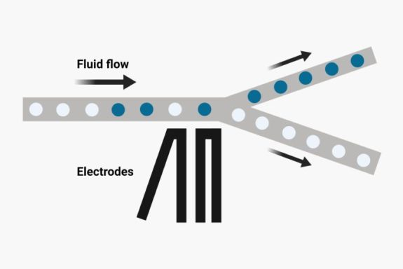 Droplet microfluidic chip schematic