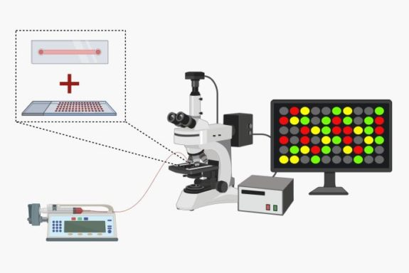 Microfluidic microarray assays