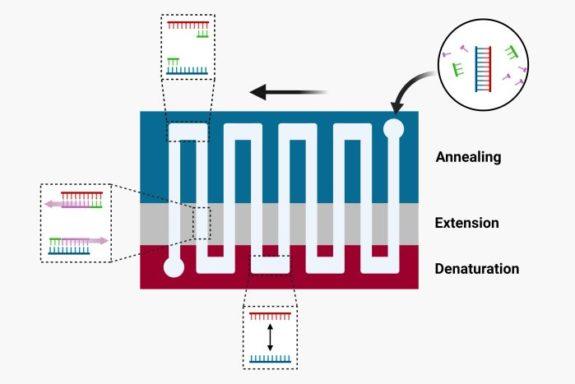 Space domain PCR copy (3)