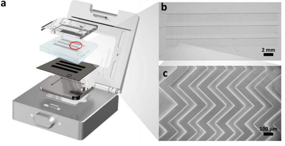 Microfluidic chip for isolation of cancer extracellular vesicles