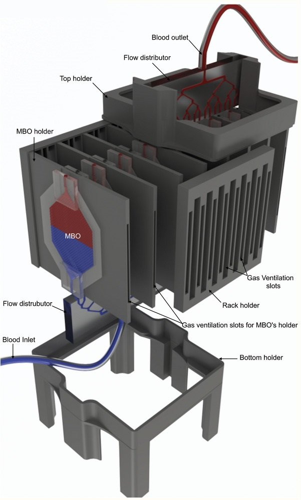 Microfluidic lung assist device
