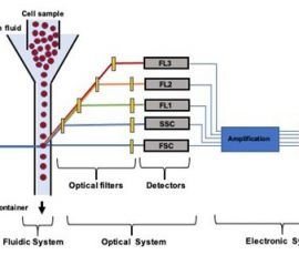 microfluidic-flow-cytometry-system