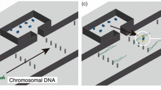 microfluidic toolbox