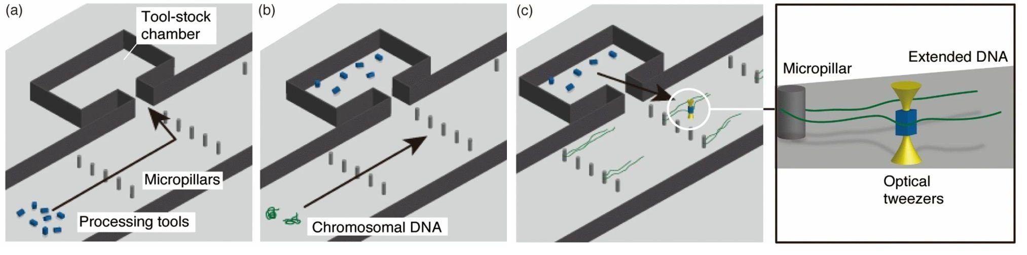 Microfluidic Workbench